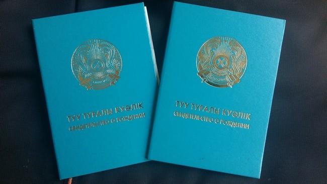 Документы на загранпаспорт мфц москва